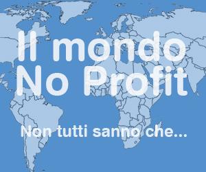 Il mondo No Profit